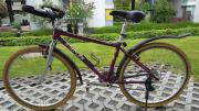 Damenmóuntainbike Simplon