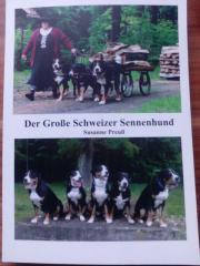 Der Große Schweizer