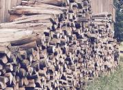 Einheimisches Brennholz, Hart
