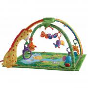 Fisher Price Rainforest
