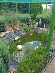 Garten(kein Schrebergarten)