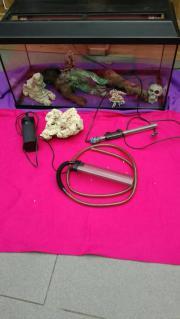 Großes Aquarium 110l