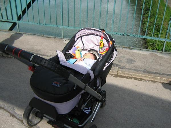 Zwillingskinderwagen hartan  Hartan Kinderwagen lila/Sw teilw.mit Leder in Hannover - kaufen ...