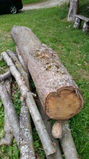 Holz - Eiche - Eichenstamm