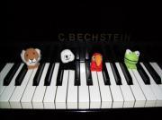 Klavier Unterricht Klavierlehrer