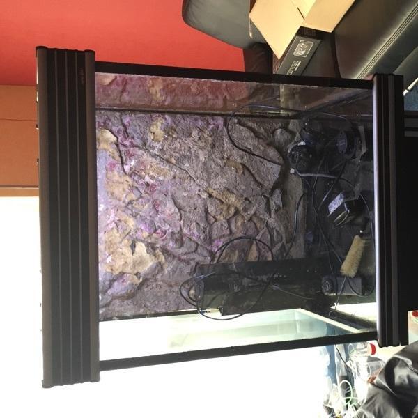 180l aquarium kleinanzeigen kaufen verkaufen bei deinetierwelt. Black Bedroom Furniture Sets. Home Design Ideas