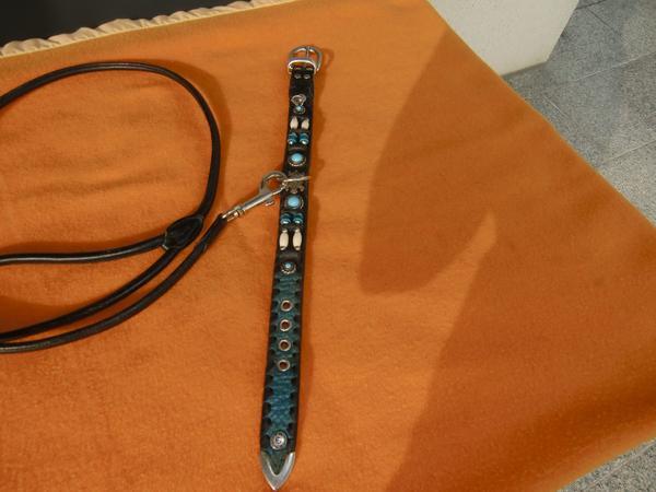 Lederhalsband und Leine