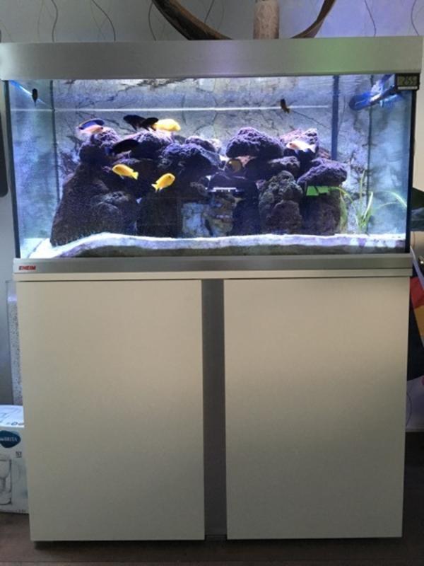 meerwasser aquarium verkaufen kleinanzeigen kaufen verkaufen bei deinetierwelt. Black Bedroom Furniture Sets. Home Design Ideas