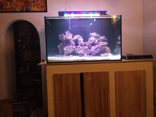 aquarium filterbecken kleinanzeigen kaufen verkaufen bei deinetierwelt. Black Bedroom Furniture Sets. Home Design Ideas