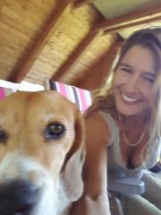 Meine Beagle Dame