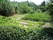Pacht Garten in