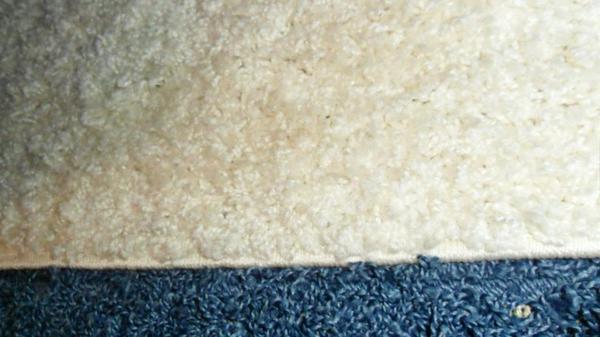 Qualitäts-Hochflor-Teppich