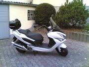 Roller DEALIM S3