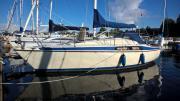 Segelyacht Maxi 84