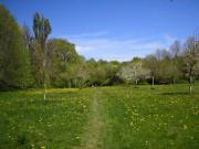 SUCHE Grundstück/Ackerland/