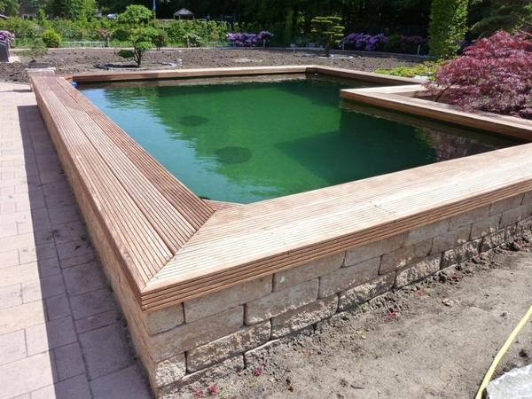 Teichbau schwimmteich folienverlegung mehr by aquatec for Fische im schwimmteich