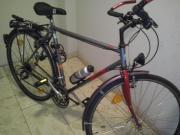 Trakking herren Fahrrad (