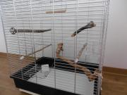 Vogelkäfig für bis