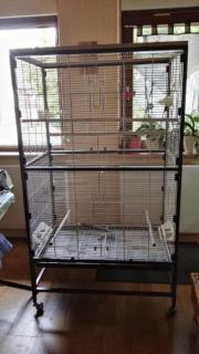 vogelkaefig in heilbronn tiermarkt tiere kaufen. Black Bedroom Furniture Sets. Home Design Ideas